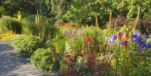 Bellevue Gardens